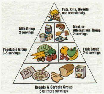 nutritional diagram
