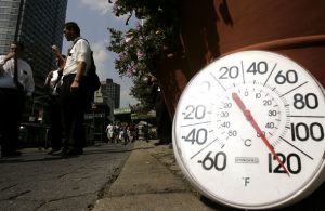 How To Survive a Heat Wave