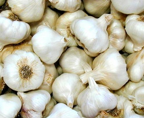 Garlic cold cough