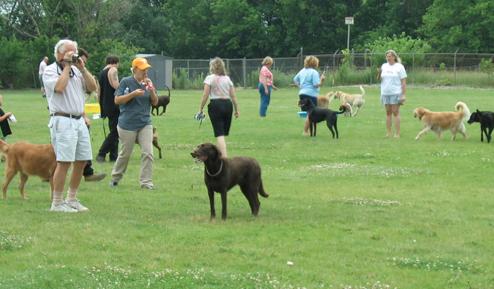 Cleveland Dog Park
