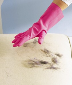 Get rid of pesky pet hair with this simple tip from Real Simple.