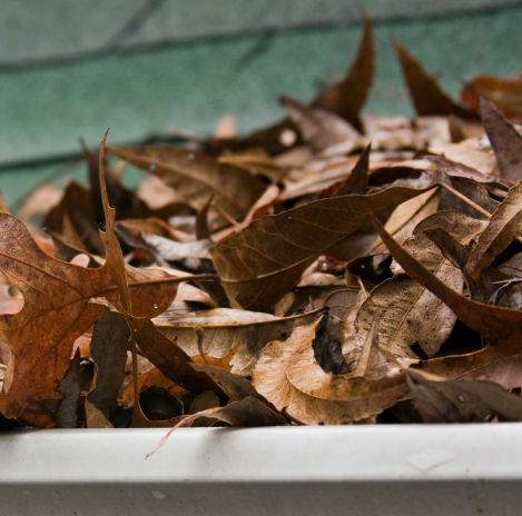 Gutter Cleaning in Cleveland Heights