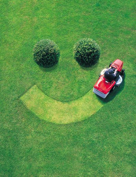 beautiful_lawn2