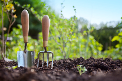 spring_vegetable_garden_guide_when_to_plant